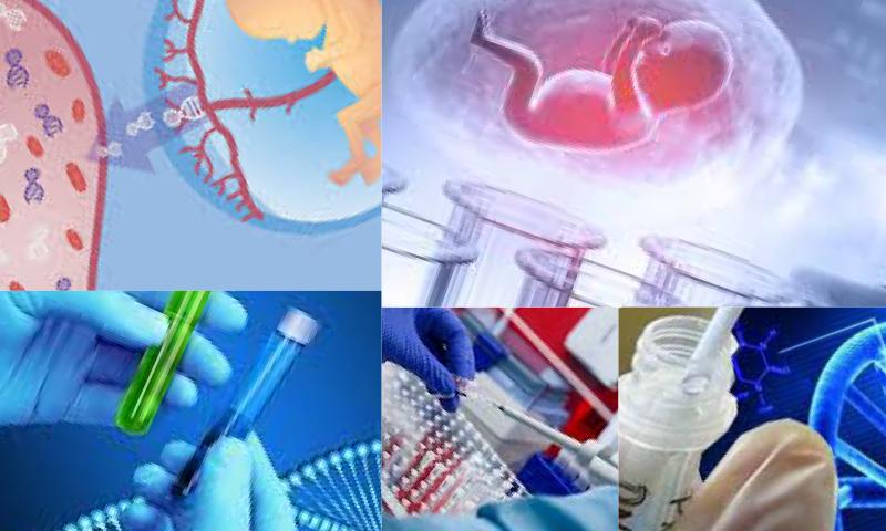 Dna Testiniz Sizin genlerinizdeki Şifreleri Çözüyor