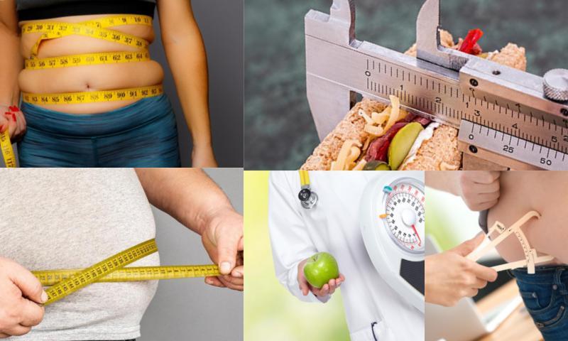 Obezite Testi Nedir?